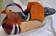 Ed's duck